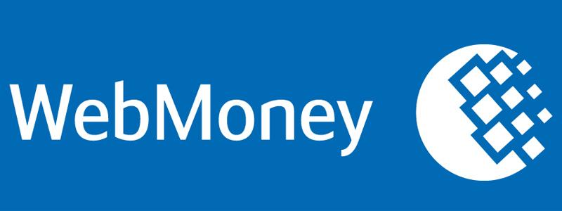 Как с карты перевести деньги на Вебмани: рабочие методы